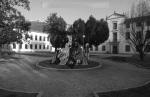2003 Piazza del municipio di Monselice1